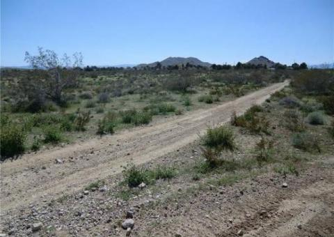 Land 1.97 Acre with Road frontage