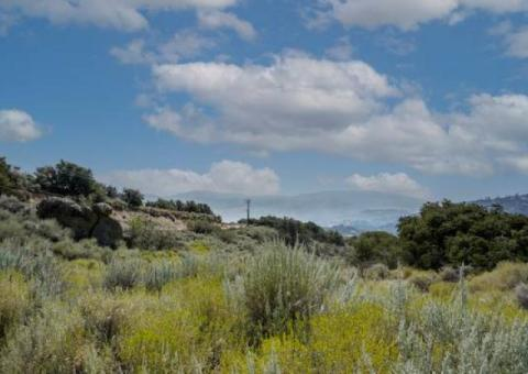 Vacant lot with views in Bear Valley Springs